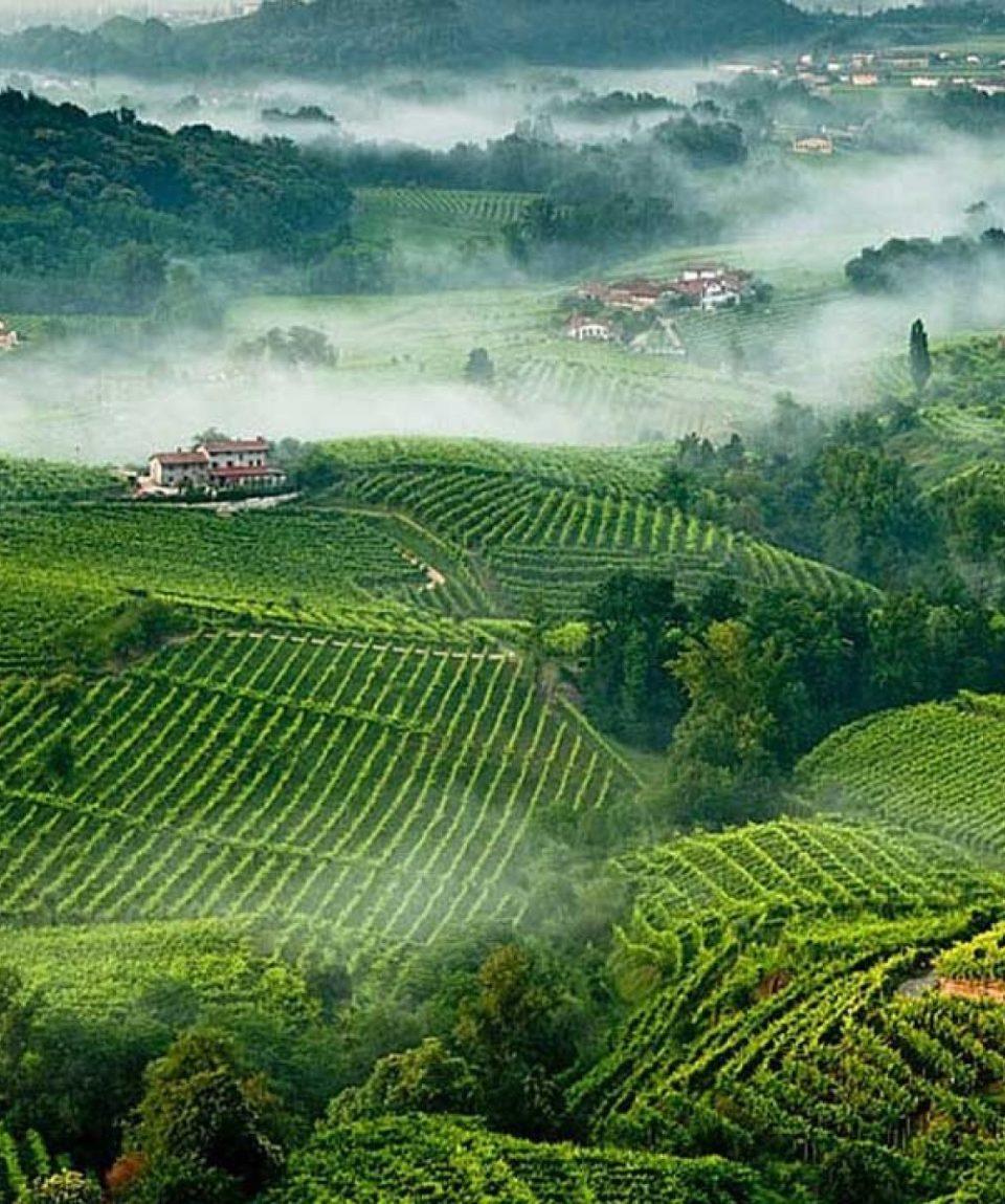colline del prosecco-WILD-DOLOMITI