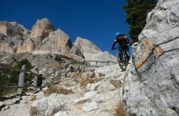 Tofane-wild-in-the-dolomiti
