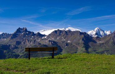 rifugio-bec-de-roces-wild-in-the-dolomiti13