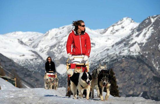 wild-in-the-dolomiti-sled-dog-tentipi